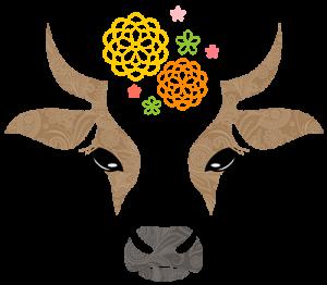cow_4_5_2